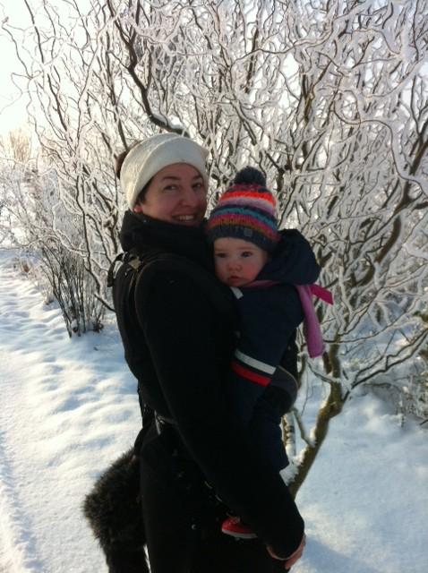 Manduca Im Winter